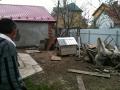 Bim the dog,  Drohobych, Ukraine