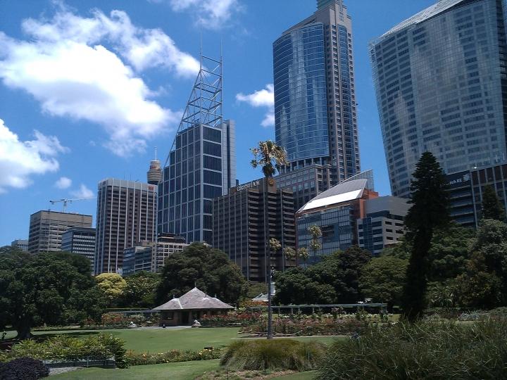 Royal Botanic Gardens view, Sydney